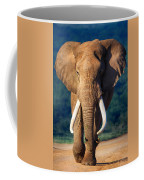Elephant Approaching Coffee Mug