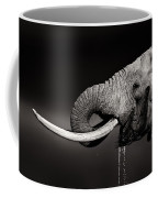 Elephant Bull Drinking Water - Duetone Coffee Mug