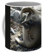 Elephant Seal Coffee Mug
