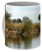 Elephant Sighting Coffee Mug