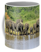 Elephants At The Waterhole   Coffee Mug