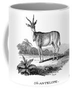 Elk Antelope Coffee Mug