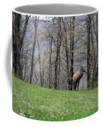 Elk, Blue Ridge Mountain Coffee Mug