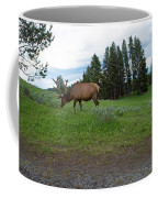 Elk Feeding Coffee Mug