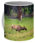 Elk In The Field Coffee Mug