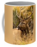 Elk Raspberry For Tom Coffee Mug