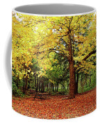 Elora Gorge Campsite In Fall Coffee Mug