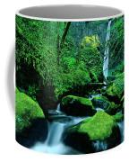Elowah Falls 3 Columbia River Gorge National Scenic Area Oregon Coffee Mug