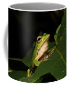 Emerald Eye Tree Frog Coffee Mug