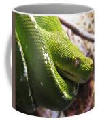 Emerald Tree Boa Coffee Mug