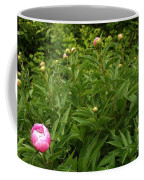Emergence        Peony         May            Indiana Coffee Mug
