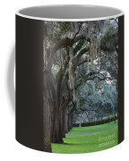 Emmet Park In Savannah Coffee Mug