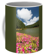 Empadadas Lakes II Coffee Mug