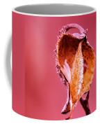 Empty Seed Pod  Coffee Mug