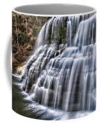 Lower Falls #4 Coffee Mug