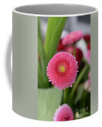 English Daisies Coffee Mug