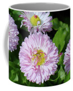 English Daisies Coffee Mug
