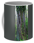 English Ivy Elder Coffee Mug