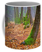 Enjoying The Forest Of Oak Run Coffee Mug