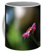 Enjoying The Sunlight Coffee Mug