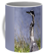 Enjoying The View Coffee Mug