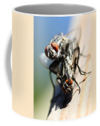 Entomologists Discover Why People Want To Be A Fly On The Wall Coffee Mug