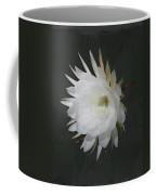 Epiphyte Blossom - Epiphyllum Oxypetalum Coffee Mug