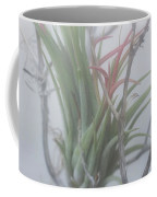 Epiphyte In The Fog Coffee Mug