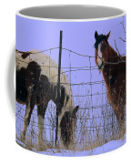 Equestrian Beauties Coffee Mug
