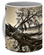 Erosion - Anselized Coffee Mug