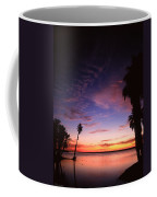 Estuary At San Jose Del Cabo Coffee Mug
