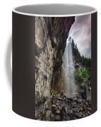 Eugenia Falls Coffee Mug