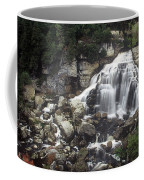 Ingliss Falls - Ontario Coffee Mug