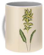 Euonymus Japonica Aurea Variegata, Maranta Micans Coffee Mug