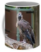 Eurasian Black Vulture 1 Coffee Mug