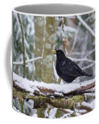 Eurasian Blackbird In The Snow Coffee Mug