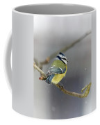 Eurasian Blue Tit With Snow Coffee Mug