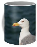 European Herring Gull Portrait Coffee Mug