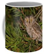 European Scops Owl  Coffee Mug