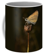 European Skipper Coffee Mug