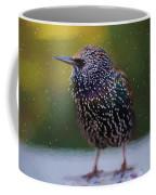 European Starling - Painted Coffee Mug