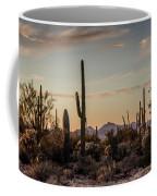 Evening In The Desert Coffee Mug