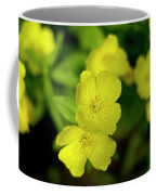 Evening Primrose Coffee Mug