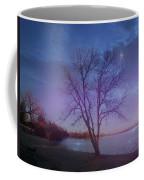 Evening Twinkles Coffee Mug