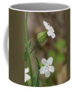 Evening Wildflower Coffee Mug