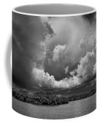 Everglades 0257bw Coffee Mug