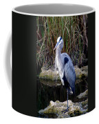 Everglades Heron Coffee Mug