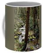 Evergreen Stream Ravine Coffee Mug