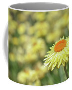 Everlasting Daisy Coffee Mug