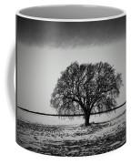 Everybody Has One Coffee Mug
